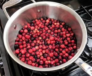 christmas cranberry sauce 1